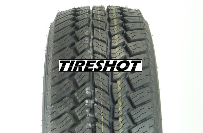 Tire Nexen Roadian AT2